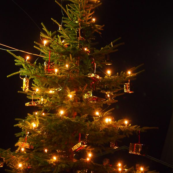Der beleuchtete Weihnachtsbaum in Berghausen.