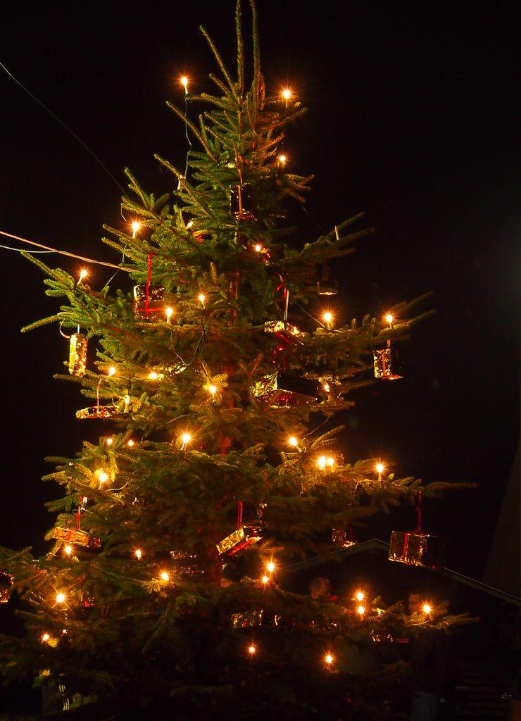 Wann Weihnachtsbaum Aufstellen.Weihnachtsbaum Aufstellen Verschönerungsverein Berghausen 1903 E V
